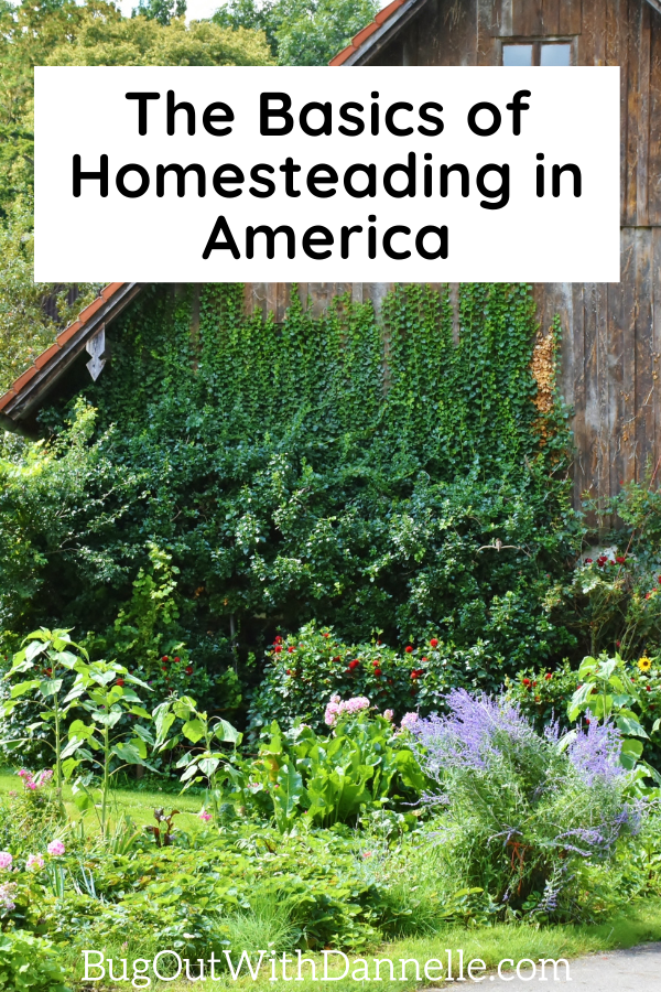 The Basics of Homesteading in America artical cover image with older barn