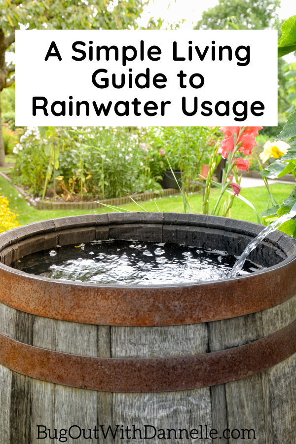 A Simple Living Guide to Rainwater Usage article cover image