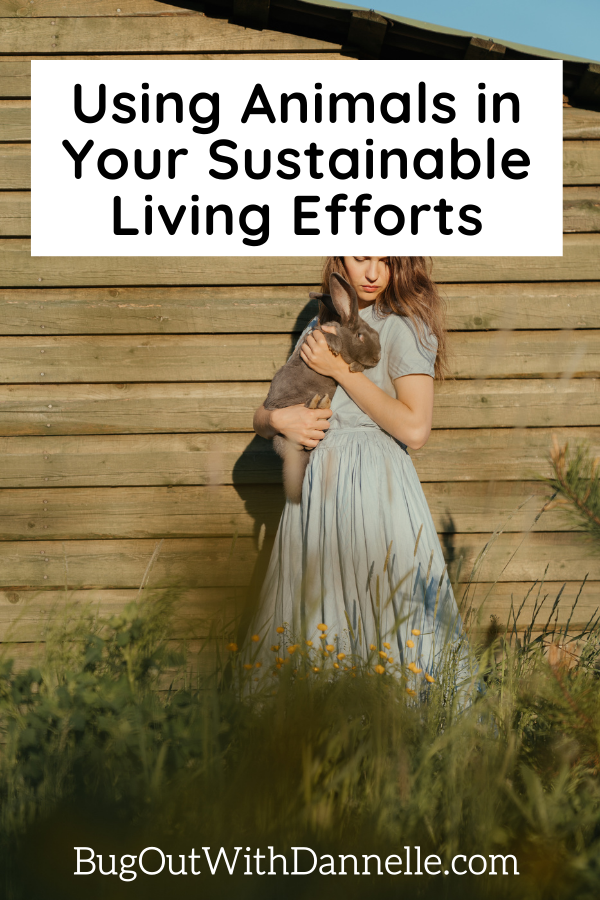 Using Animals in Your Sustainable Living Efforts