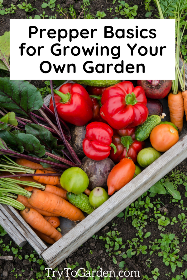 Prepper Basics for Growing Your Own Garden tray of vegetables