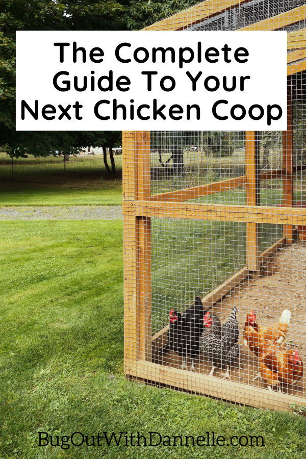 Why Choose a Small Chicken Coop Over a Larger One?