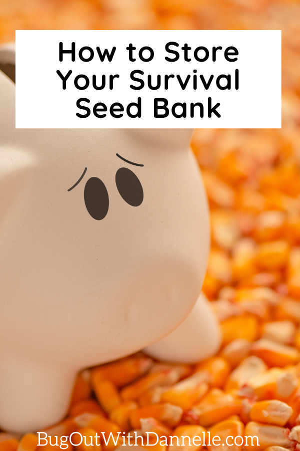 Setting Up Your Survival Seed Bank