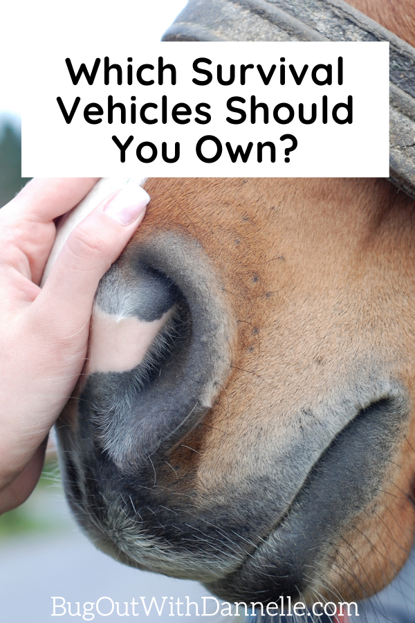 Which Survival Vehicles Should You Own with a horse