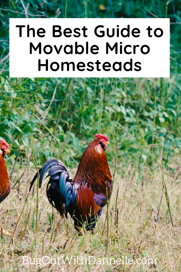 The Best Guide to Movable Micro Homesteads article cover image