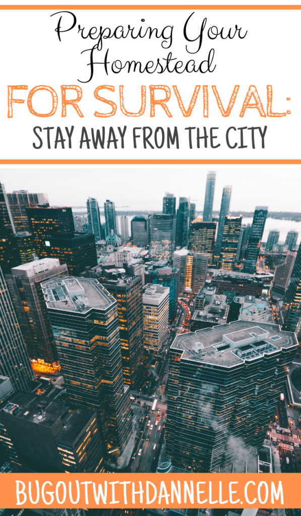 Preparing Your Homestead for Survival: Stay Away from the City picture of a large city