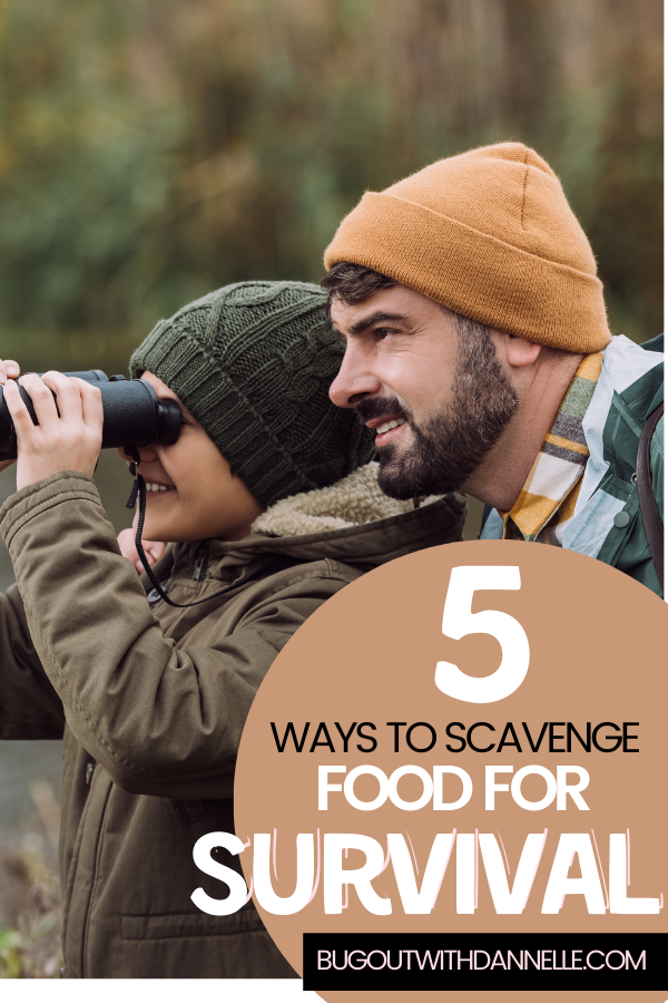 Top 5 Ways to Scavenge Food for Survival Situations