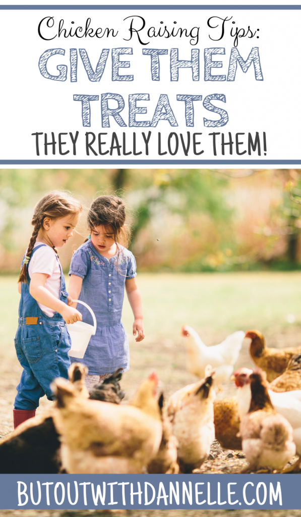 Chicken Raising Tips: Give Your Chickens Treats!