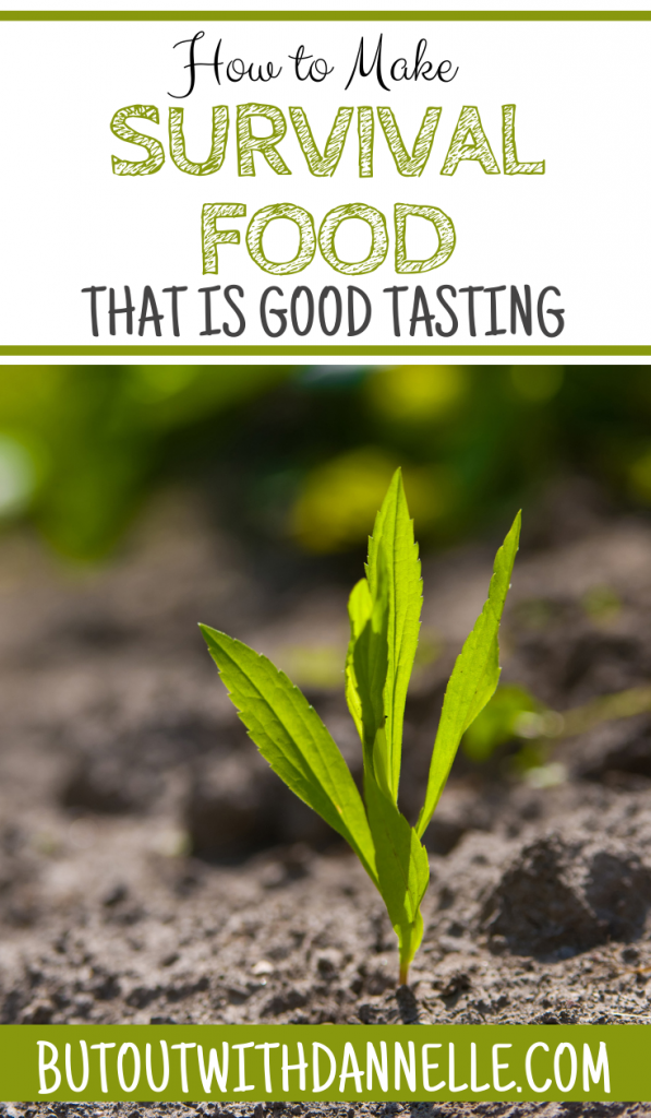 How to Make Good Tasting Survival Food: Tips to Know